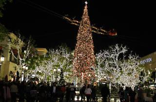 Grove Christmas