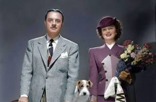 The Thin Man + Libeled Lady double feature