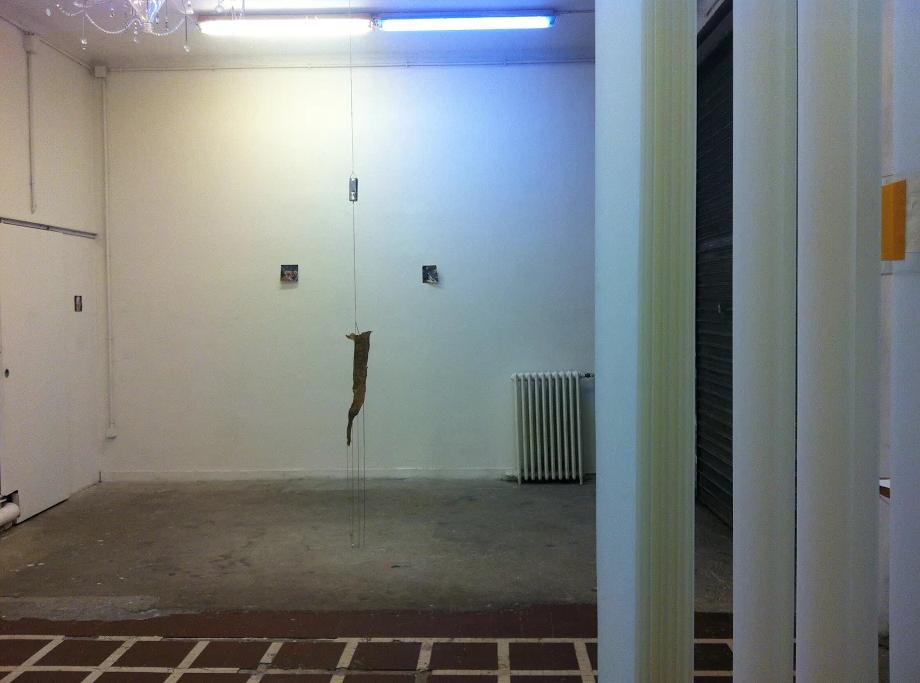 Galerie Tonus