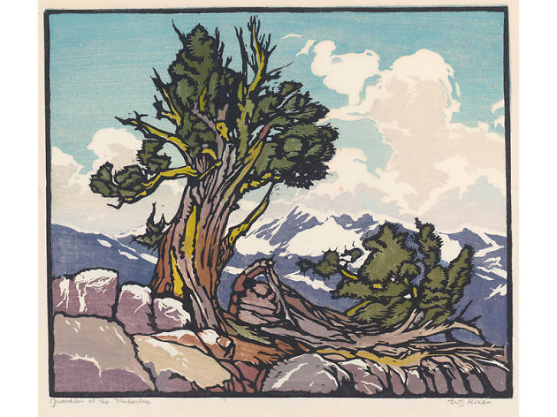 The Nature of William S. Rice: Arts and Crafts Painter and Printmaker