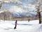 Best ski spots: Hokkaido vs Niigata