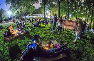 picnic nocturno en el jardín botánico de chapultepec