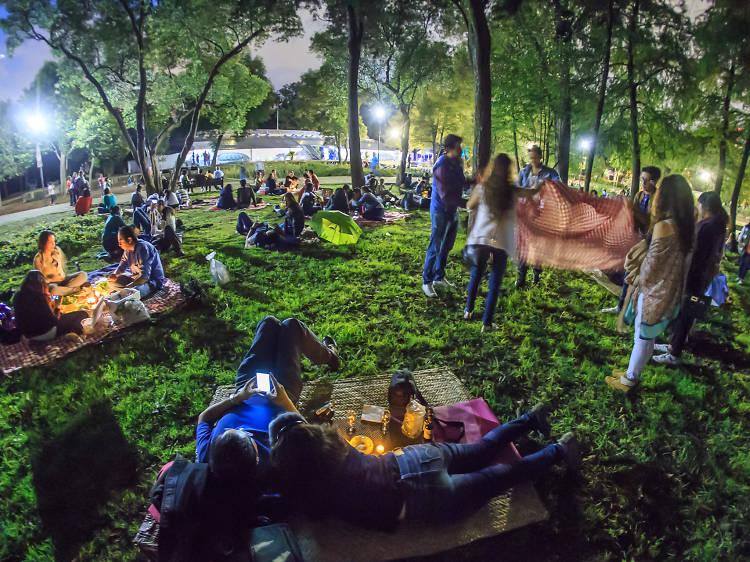 Cena romántica en el Picnic Nocturno del Bosque de Chapultepec