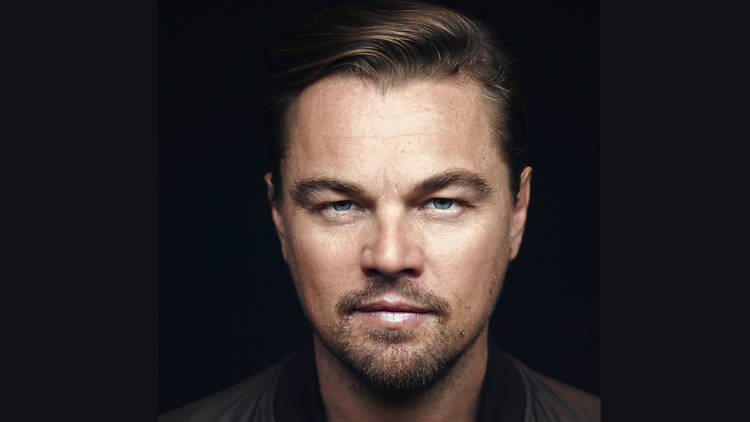 Leonardo DiCaprio landscape portrait