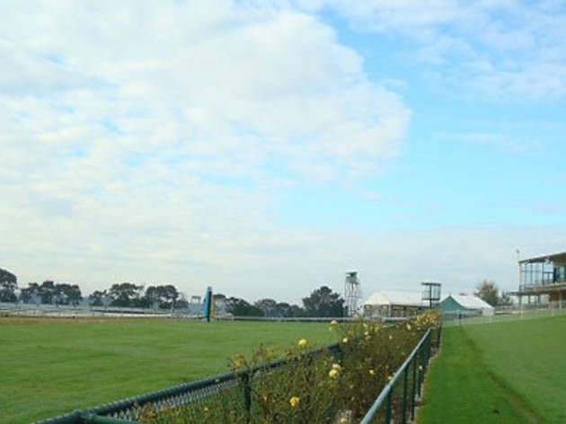 Mornington Racecourse