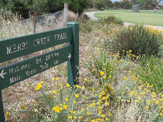 Ride along the Merri Creek trail