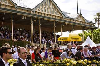 Bendigo Racecourse