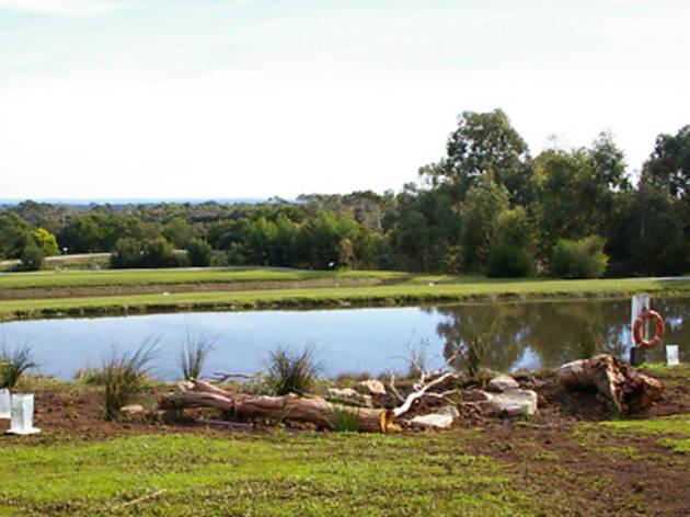 Rhyll Trout and Bush Tucker Farm