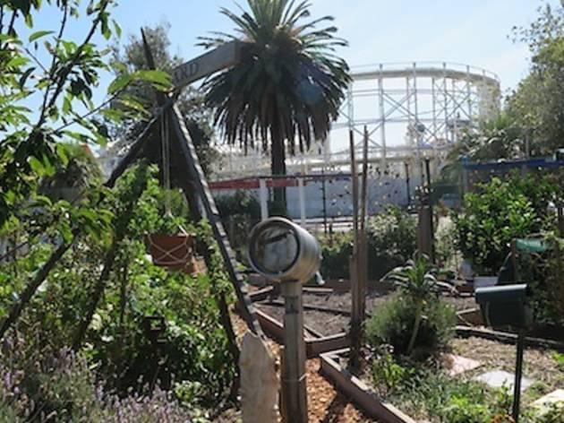 Veg Out Community Gardens