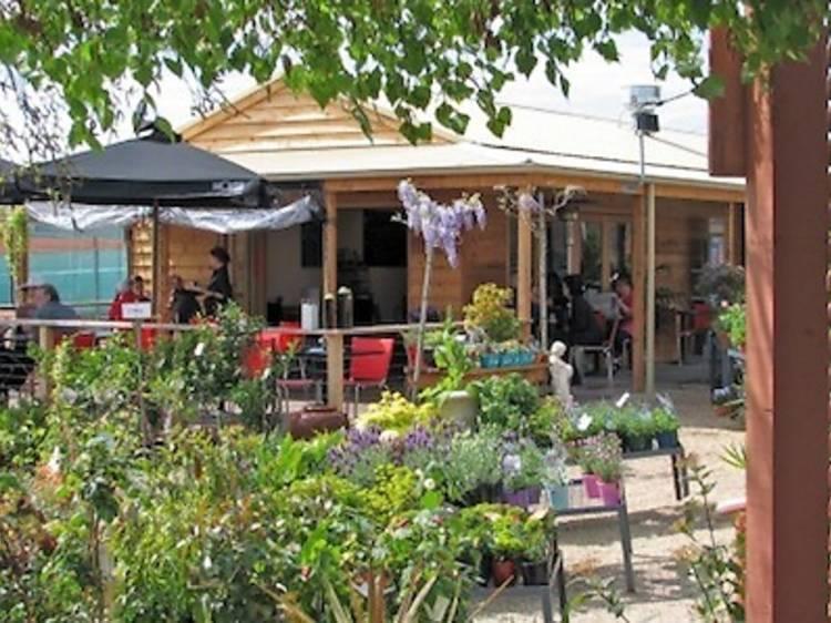 Kew Nursery and Café