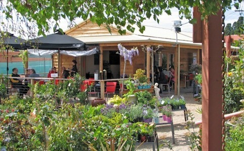 Kew Nursery and Café