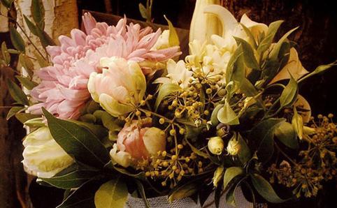 Pollon Flowers