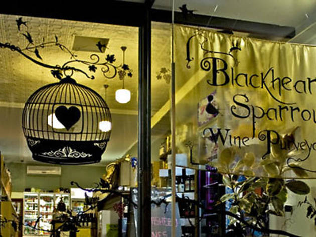 Blackhearts and Sparrows: East Brunswick