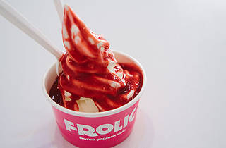 Frolic Yoghurt