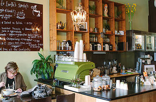 Down To Earth Coffee and Tea House