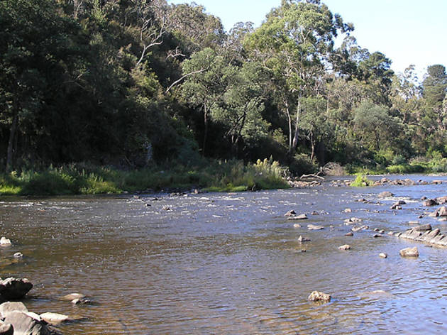 Around Warrandyte