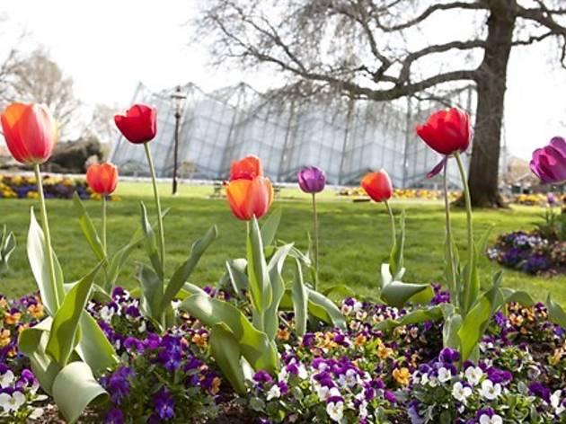 Botanical Gardens Ballarat