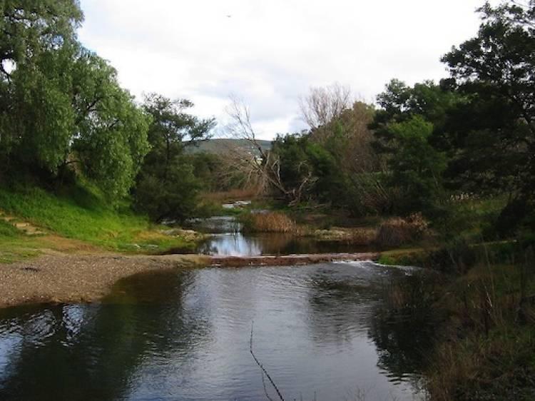 MacKenzie's Flat picnic area