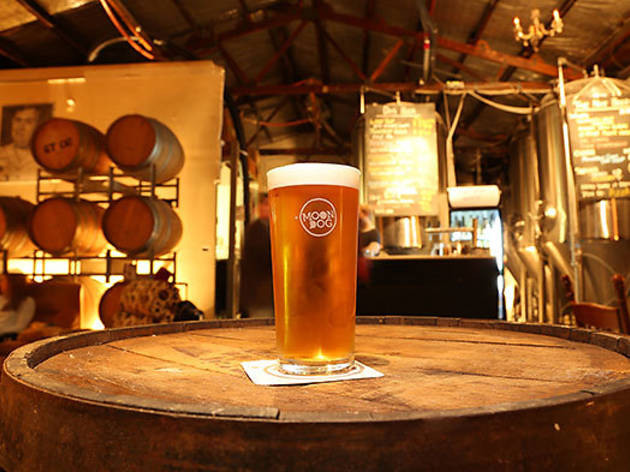 Moon_Dog_Brewery_Bar023-02.jpg