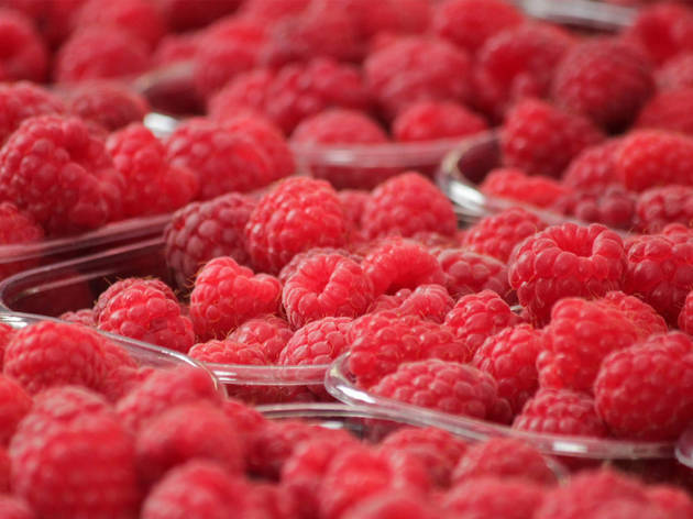 Lots of raspberries sitting in punnets