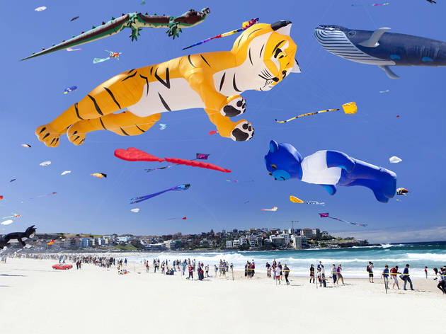 A shot of festival of winds at Bondi Beach