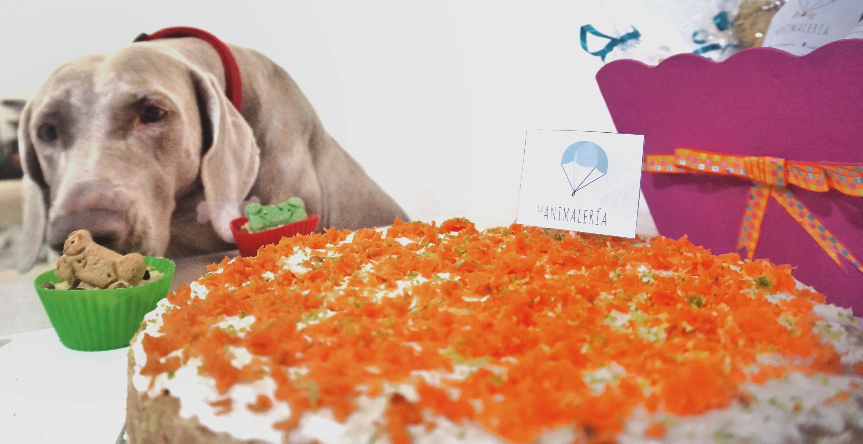 Celebra el cumpleaños de tu mascota con los pasteles de La Animalería
