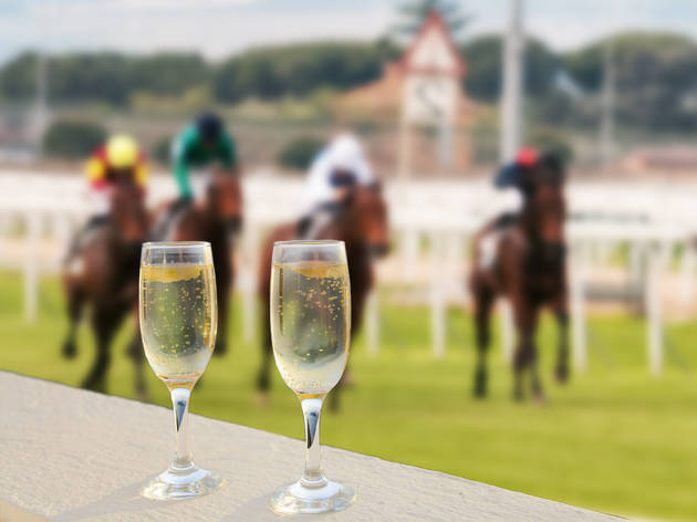Two glasses of champagne sit on a ledge as horses race behind