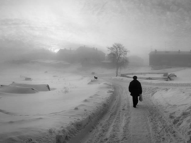 Pentti Sammallahti: Here Far Away