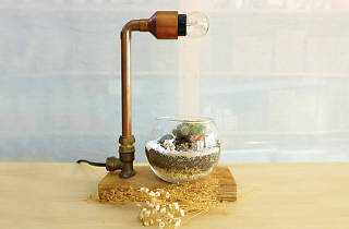Copper Lamp, terrarium make your own