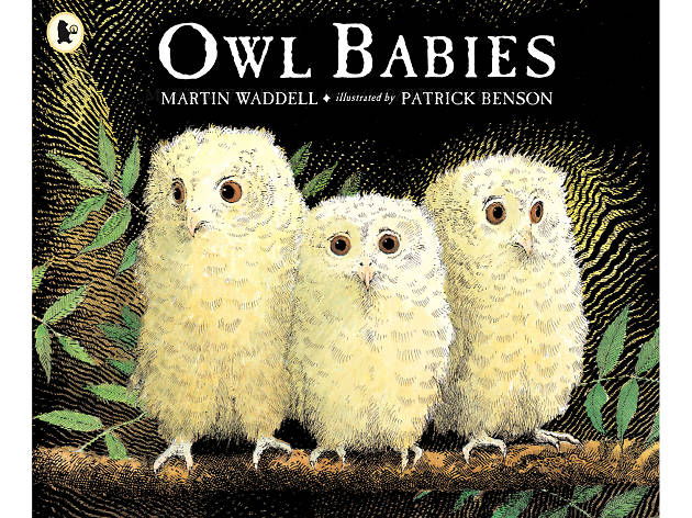 100 best children's books: Owl Babies