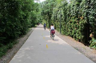 "The Katy Trail (Photograph: Courtesy CC/Flickr/<a href=""https://www.flickr.com/photos/dickdavid/5647413359/"" target=""_blank"" rel=""nofollow"">Richard Wezensky</a>)"
