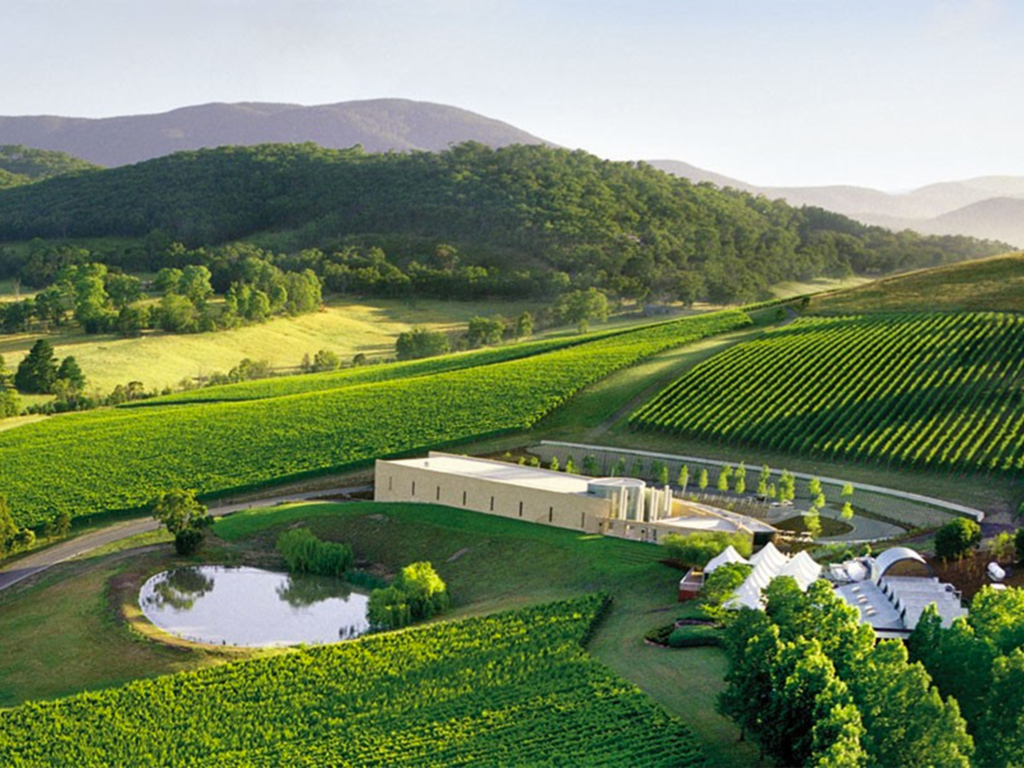 Best Yarra Valley Wineries 13 Of The Best Yarra Valley
