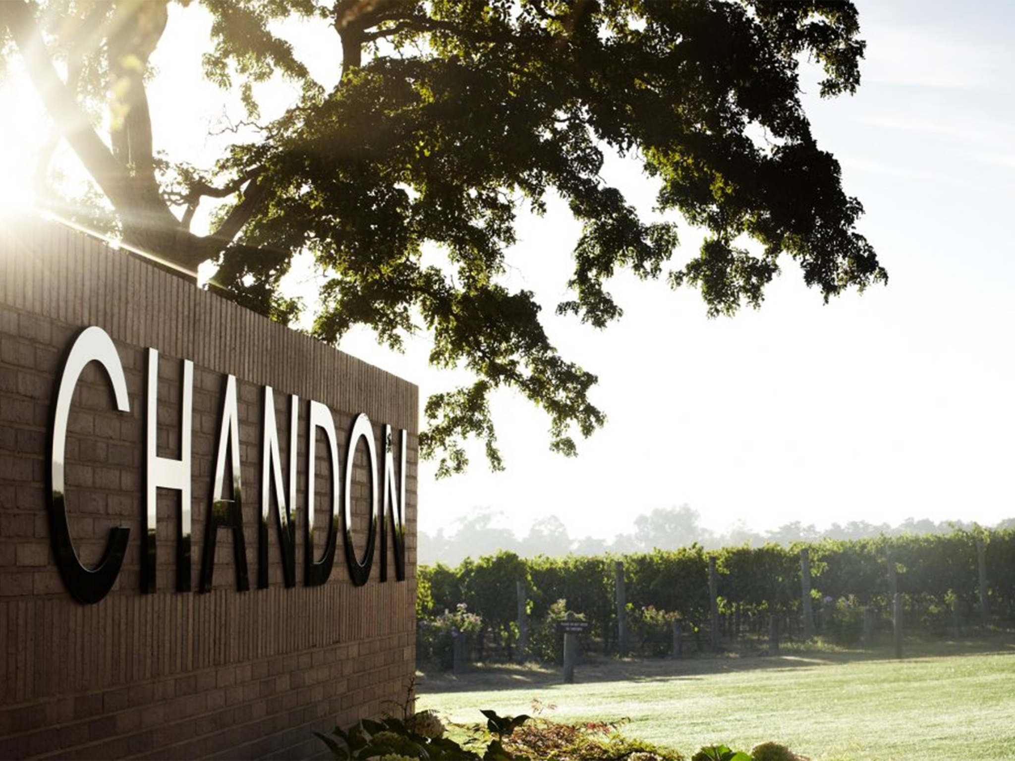 The entry sign to Chandon's vineyard