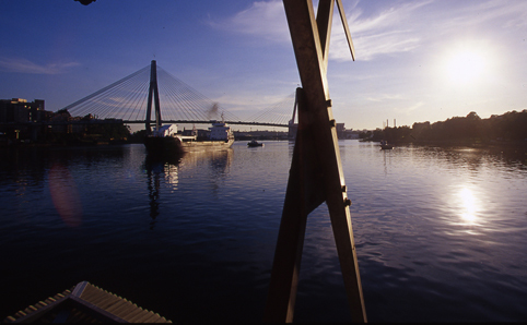 Blackwattle Bay Park