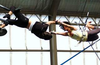 Sydney Trapeze School