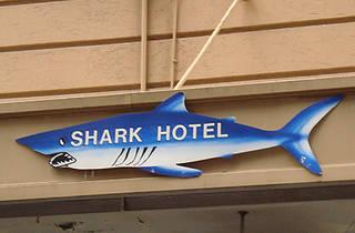 Shark Hotel