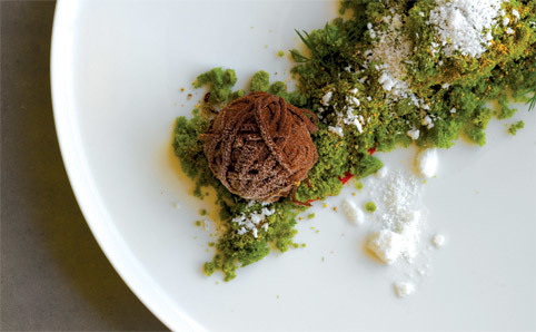 Best Outta Town: Biota Dining