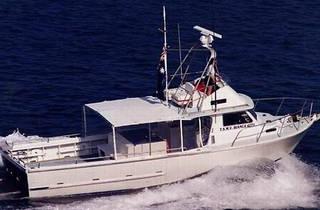 Dorso's Deep Sea Fishing