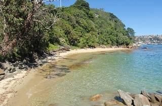 Cobblers Beach