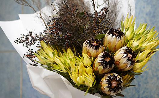 Poho Flowers