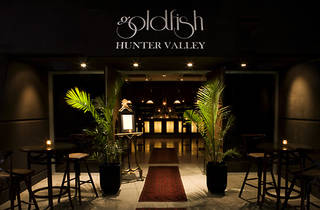 Goldfish Hunter Valley