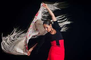 Diana Reyes Flamenco