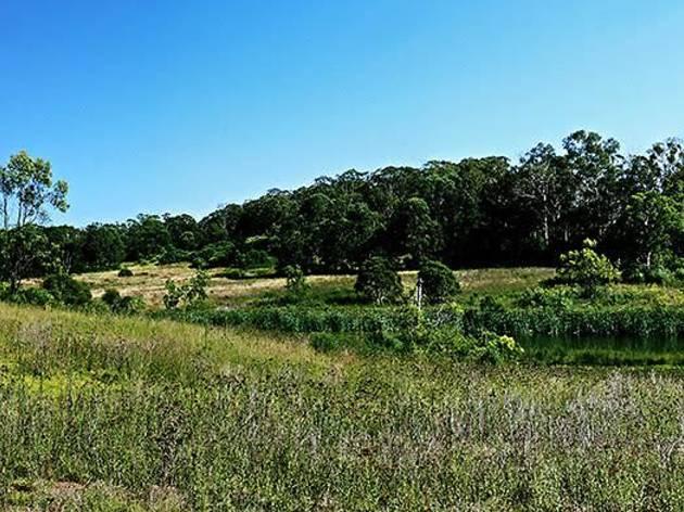 Western Sydney Parklands
