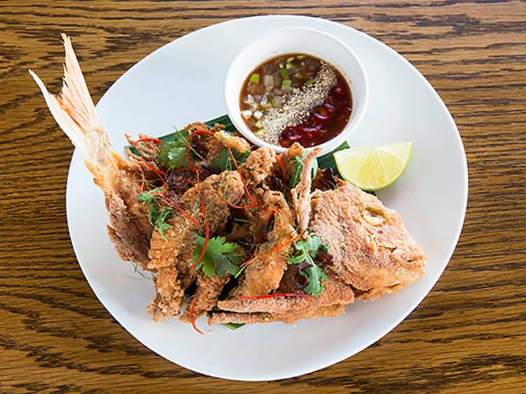 Crisp market fish of the day – Longrain