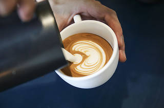 haven--coffee-pour.jpg