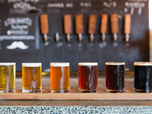 Sydney craft beer guide