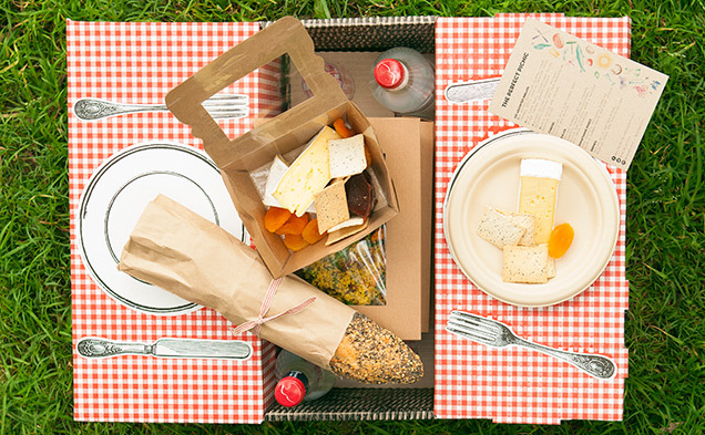 pop-up-picnic-05.jpg