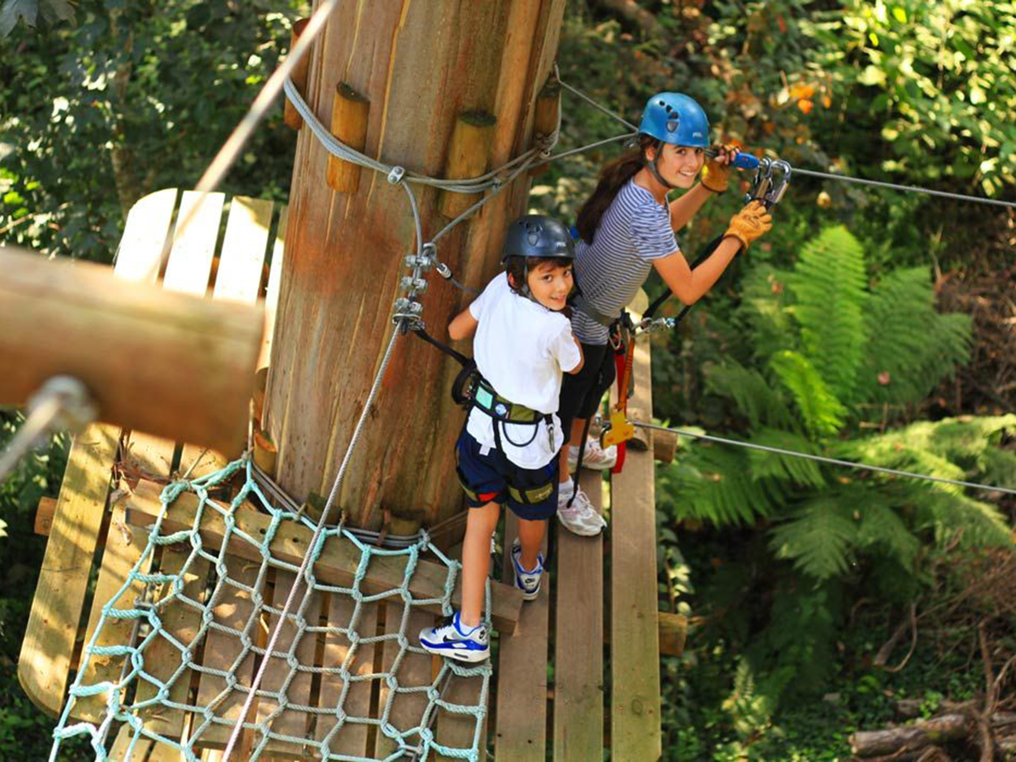 Get your Tarzan on at the Trees Adventure Park