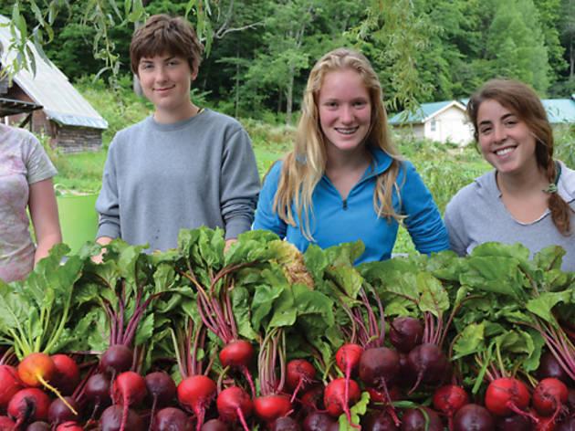 Farm & Wilderness Family Camp
