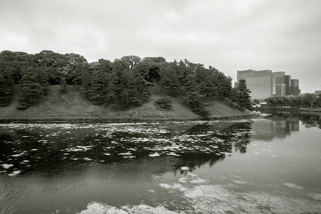 東京を創訳する 第1回『皇居』